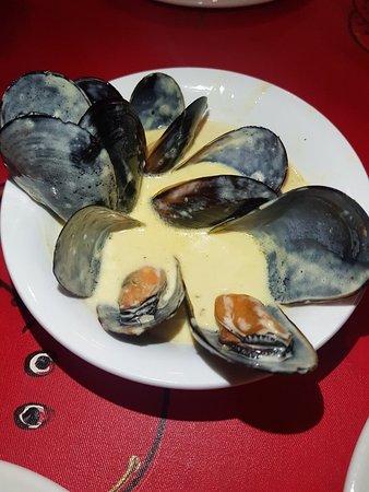 Pratos variados de ostras