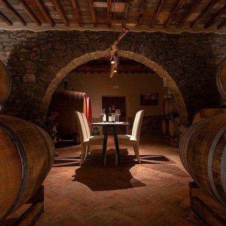 Castellina In Chianti Photo