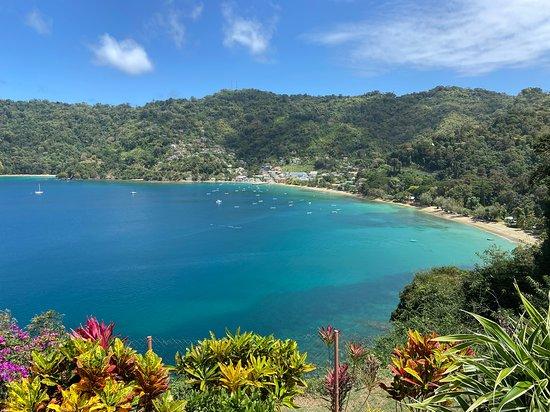 Фотография Full Island Tour (Including Lunch & Snorkeling)