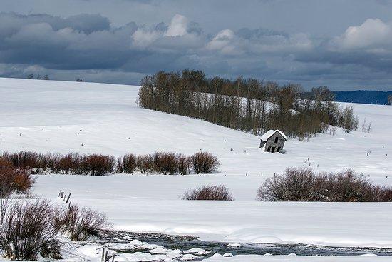 Swan Valley, ID: Scenic Idaho