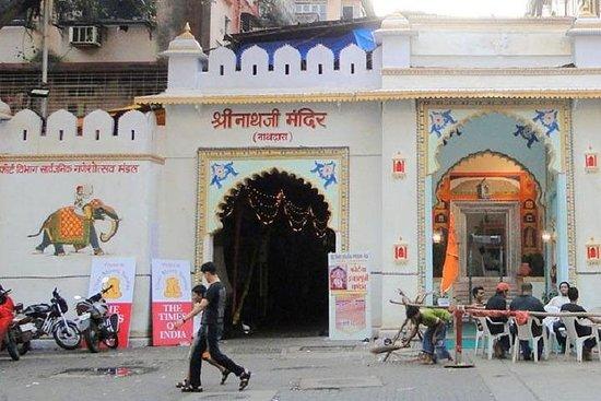 Eklingji And Shrinathji Temple Trip