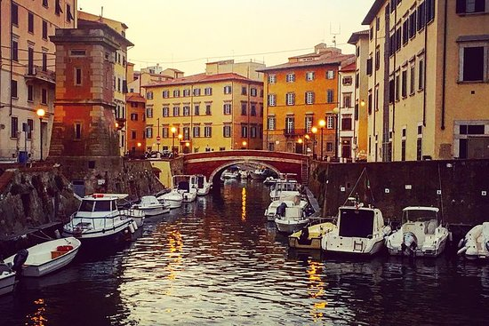 Excursão a pé privada de Livorno com...