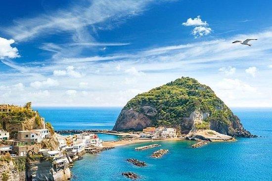 Ischia og Procida privat bådtur