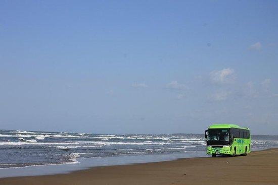 Tour de un día en autobús para experimentar el clima y la cultura de...