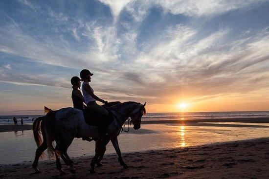 令人惊叹的巴厘岛秋千与骑马