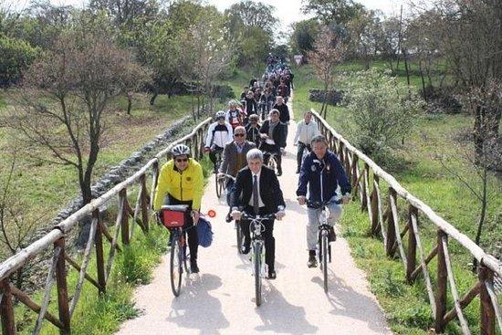 Visite à vélo dans la vallée d'Itria