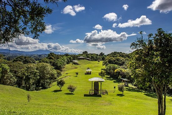 San Agustin Colombia- Tourist Ring