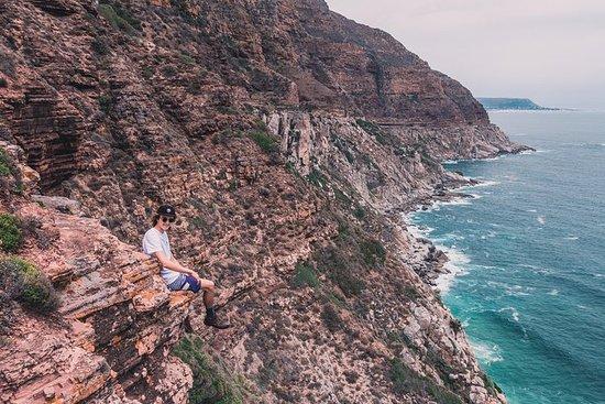 The Road Trip - Cape Point & Penguins