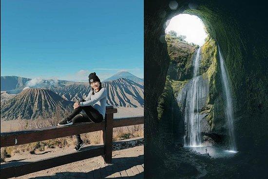 1 Tag - Mount Bromo (5 Plätze) und...