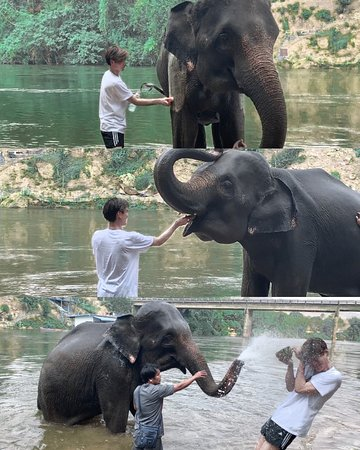Really happy in the afternoon to be able to play with elephants in the river in #SaiyokElephantSanctuary continue to feed the elephants, and finally, the elephants take a bath together by spraying water from their trunks. The elephant here is very funny and lovely! Suay makkk!