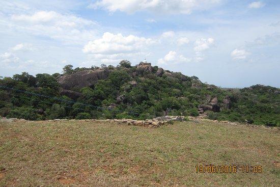Pictures of Sri Lanka Holiday Partner - Kotte Photos - Tripadvisor