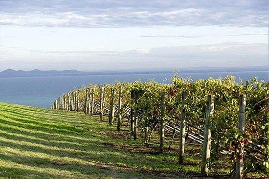 Winery Tours - Mornington / Yarra ...