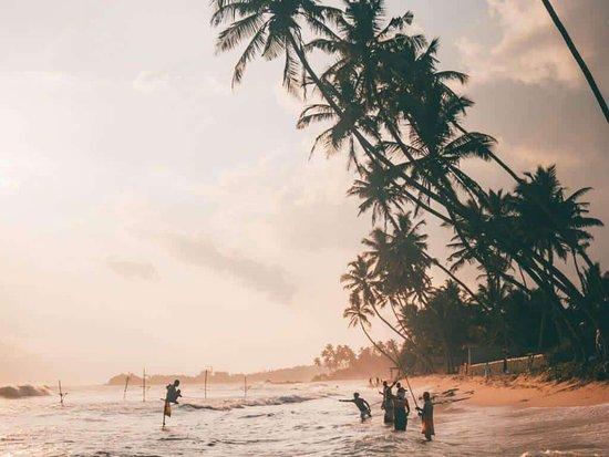 Ravi Lanka Tours