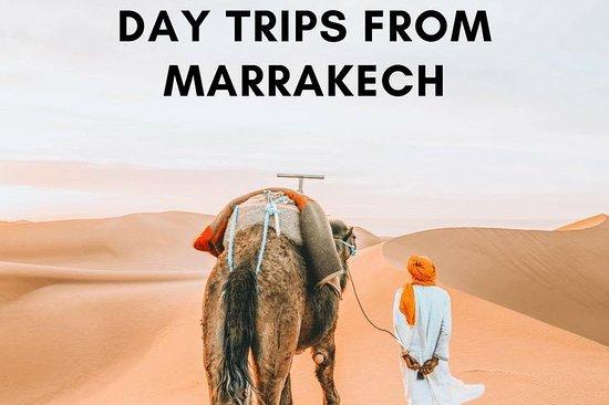 marrakech day trip