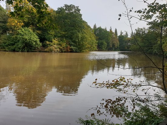 Lymm Dam - 2020 All You Need to Know BEFORE You Go (with ...