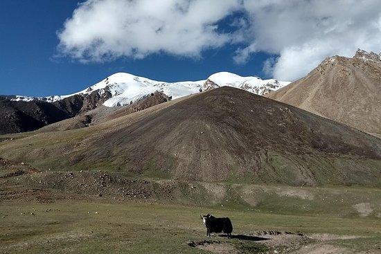 17 Days Trekking Shimshal Pass Manglik Sar (6050m Peak Pakistan – fotografija
