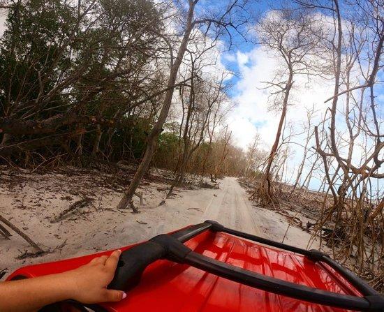 Guriu, CE: No passeio pelo litoral Oeste vocês vão passar pelo manguezal seco no Guriú, em Camocim. Uma paisagem incrível 🤗  Pousada WindJeri - Praia de Jericoacoara Reserve agora!  📞+55 (88) 9 9655 3411 📧 pousada@windjeri.it 💻 www.windjeri.it  #pousada #windjeri #jericoacoara #vemprajeri #hospedagem #jeri #windsurf Foyo @nessarques