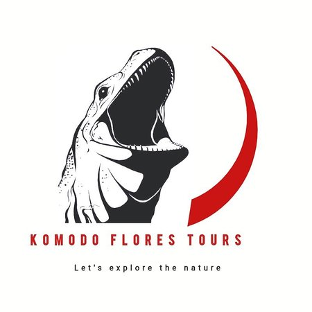 Komodo Flores Tours