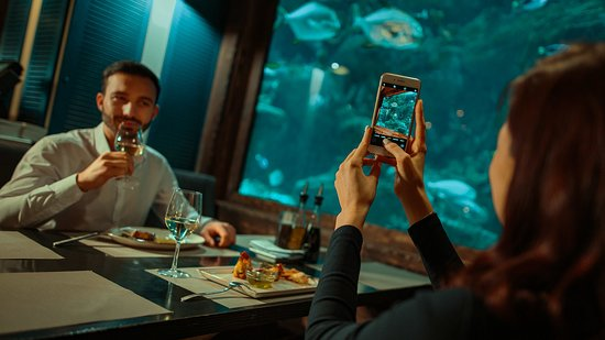 Marlin - fish restaurant 사진