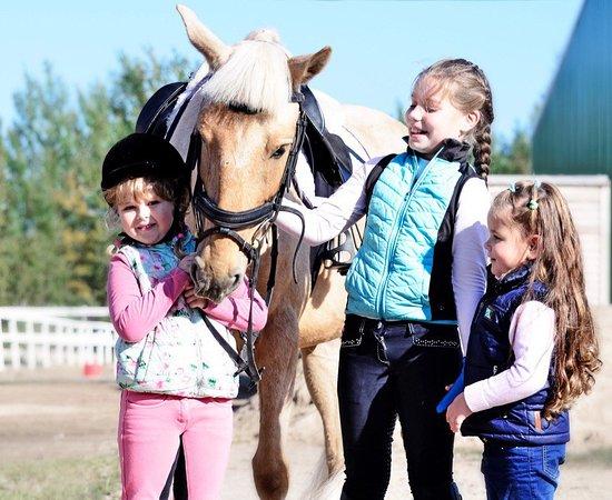 Kronshtadt Equestrian Club