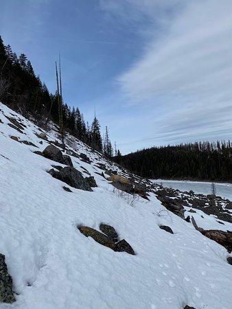 Stryker, MT: Blue Lake, Montana