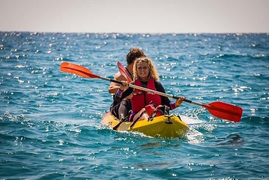 Excursion de 2 heures en kayak dans...