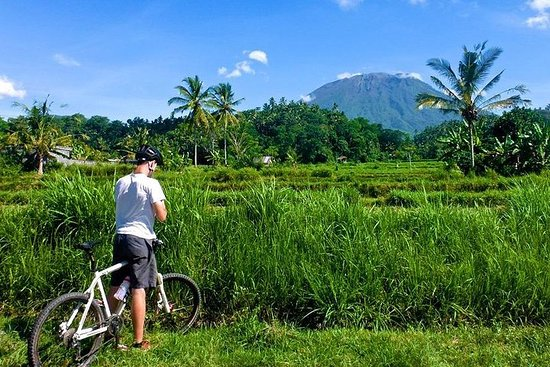 Full-Day Bali Cycling Adventure and...