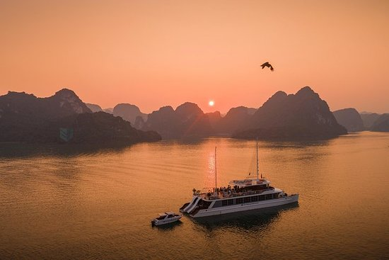 Full Day Catamaran Cruise in Halong...