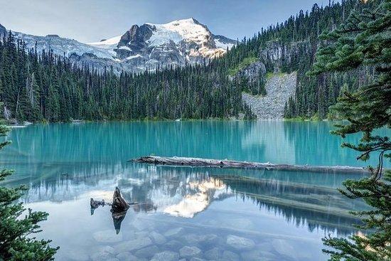 Tagesausflug nach Joffre Lakes