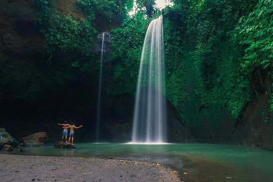 Bali - Highlight Ubud Wasserfall Tour ...