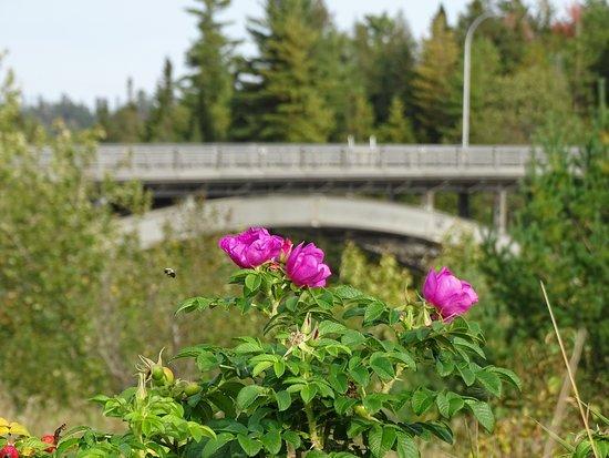 Pont d'aluminium d'Arvida
