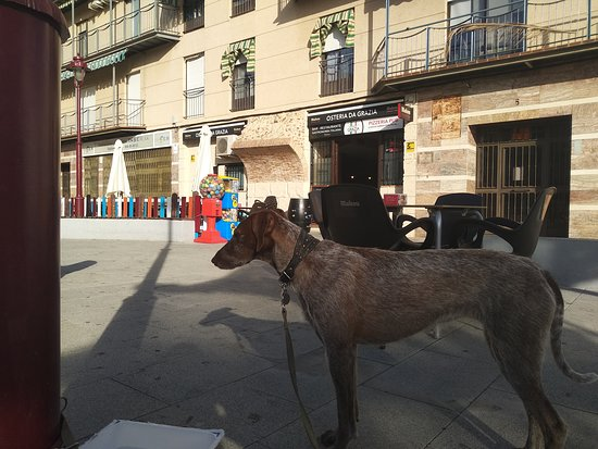 Provincia de Ciudad Real, España: Gran restaurante de comida italiana. Gente encantadora y calida , la comida muy rica a precios normales !! Grazia una bellísima persona :)