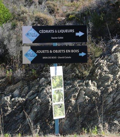 Les Cédrats du Cap Corse