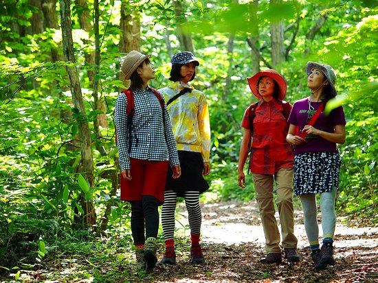 Kaminoyama Onsen Kurort Healthy Walking