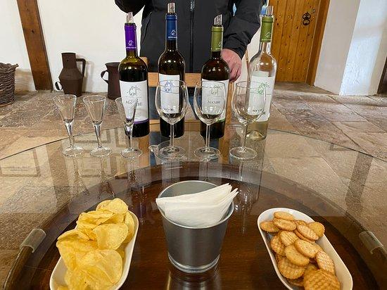Фотография Lisbon Wine Tasting Private Tour in the Setubal Region