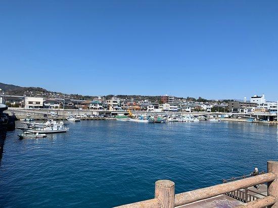 Odawara Fishery Harbour