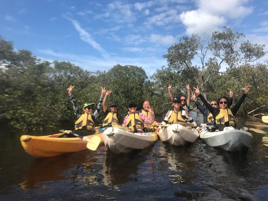 Relaxing in the #mangroves😎 on our guided kayak tour on the Myall River, launch from Hawks Nest.
