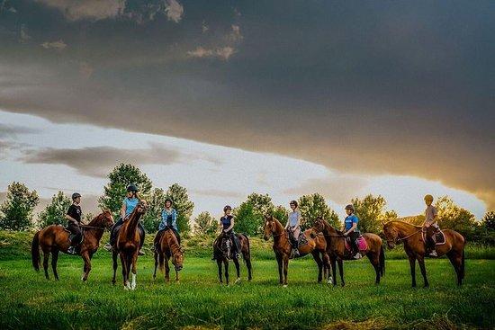 包括的な乗馬とジープ探索