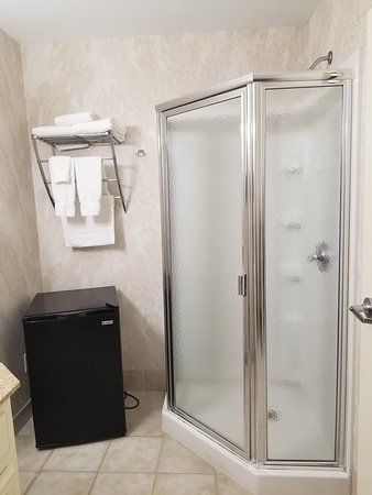 Seriously...unplug the fridge for a shower??