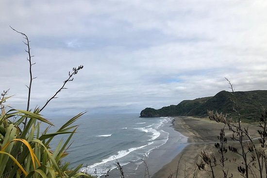 Discover Auckland's Black Sand Beach...