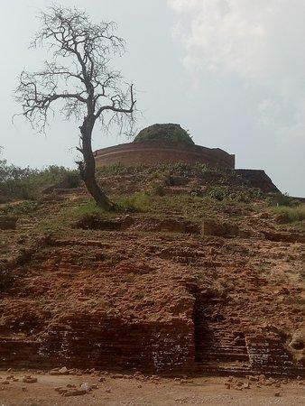 Kesariya, India: Back view of the Stupa