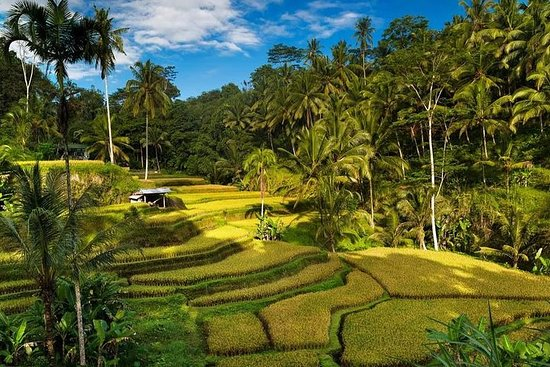 Exploring Bali in 3 Days: Discover Top Places in Bali