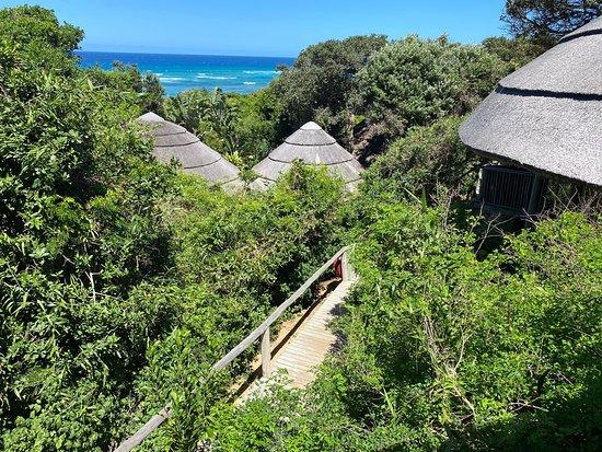 iSimangaliso Wetland Park ภาพถ่าย