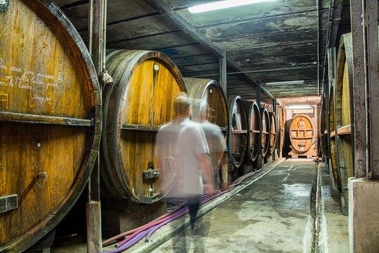Vins fins et crémants d'Alsace Zeyssolff - Au Péché Vigneron