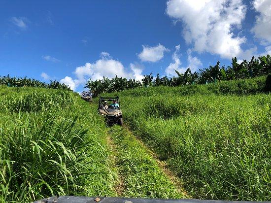 Martinique Buggy