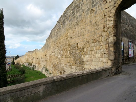 Porta Tarquinia
