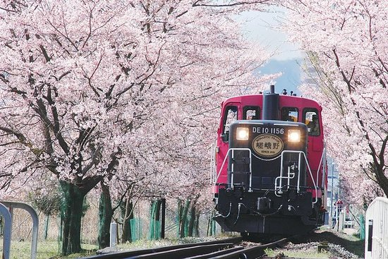 Kyoto Sagano Romantic Train Day Tour (with Halal Lunch)