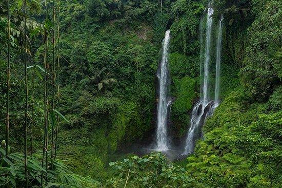 Cachoeira de Sekumpul bali