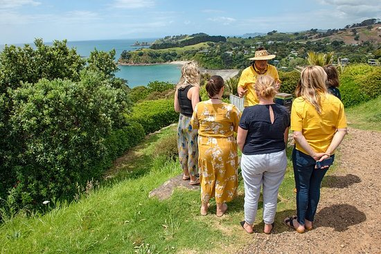Waiheke Island Morning, Afternoon or Full Day Tours