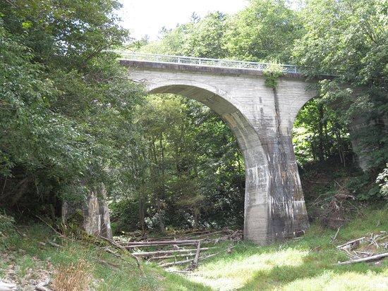 Daini Otofukegawa Rikkyo Bridge